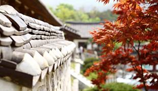 ソウルの秋