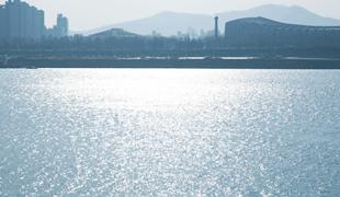 漢江の銀白色
