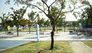 緑陰樹広場