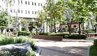 世宗芸術の庭園(掌隷院跡)