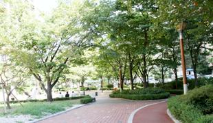 都染緑地公園