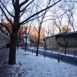 ソウル・徳寿宮トルダムキルでぶらり散歩