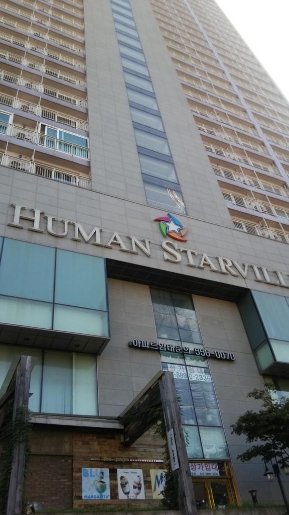 201409韓国 『CHEONGDAM HUMAN STARVILLE』