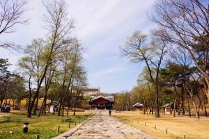 ソウル:宣靖稜
