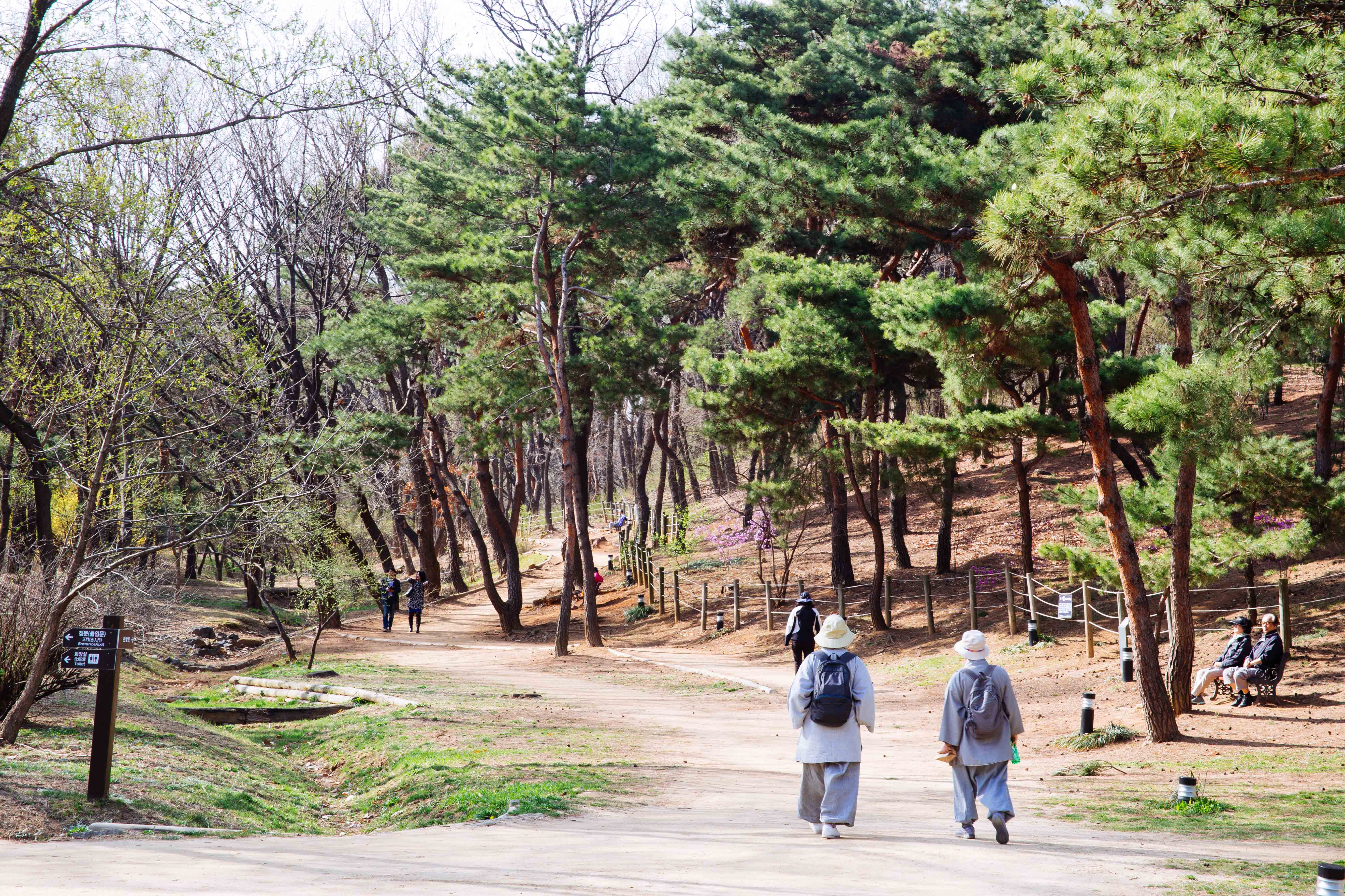 Seoul Seonjeongneung3
