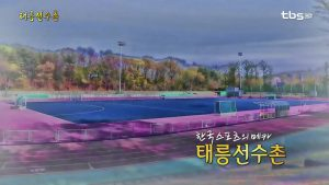 Taereung Training Center: The Heart of Korean Sports