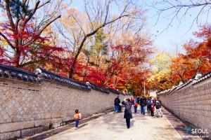 晩秋の彩り チャンドックン(昌徳宮)