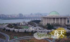 ソウルの四季