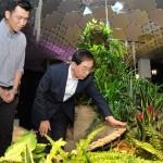 ソウル市、ニューヨーク「ローライン」で地下スペース再生案を模索