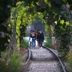 ソウルの緑地はどれだけ増えた? まもなく3大都市公園オープン