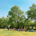 市民の健康のための森林セラピーと足湯をワールドカップ公園で