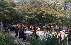 五色の紅葉に染まったナムサン(南山)で、11月初めまで多彩な秋のイベントを開催