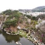 森と渓谷の美しさをソウルで楽しむなら?