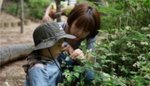 ソウル市、春を迎える公園プログラムを多彩に運営