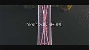 time-lapse_video_of_spring_in_seoul_thumbnail