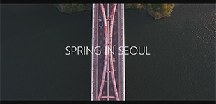 春のソウルのタイムラプス動画