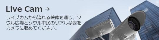 Live Cam → ライブカムから流れる映像を通じ、ソウル広場とソウル市民のリアルな姿をカメラに収めてください。