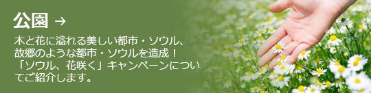 公園 → 木と花に溢れる美しい都市・ソウル、 故郷のような都市・ソウルを造成! 「ソウル、花咲く」キャンペーンについ てご紹介します。