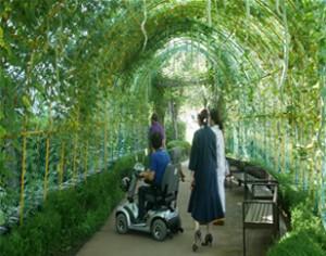 ソウル市、チャムシル(蚕室)運動場内に市民の休息スペース「ひょうたん日陰トンネル」を造成