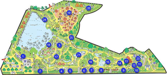 プルン樹木園_map