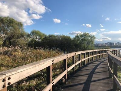 ハンガン(漢江)公園、秋のおすすめ散策路4選