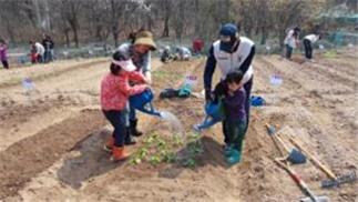 ソウル市、2月1日から環境にやさしい週末農場7,090区画を分譲
