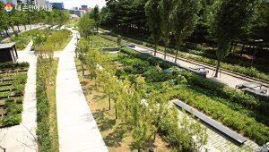 ソウル市、計6kmとなるキョンチュン線森の道の全区間を公開