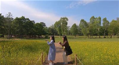 「ソウル子供大公園広報映像公募展」2019年受賞作を公開