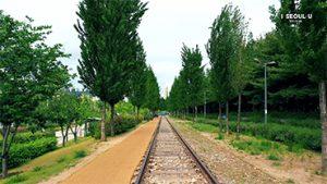 ソウルの上空からの映像 - キョンチュン線森の道