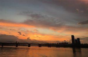 ソウル市、真夏の夜のパンポ(盤浦)ハンガン(漢江)公園で「夜景ツアー」を開始