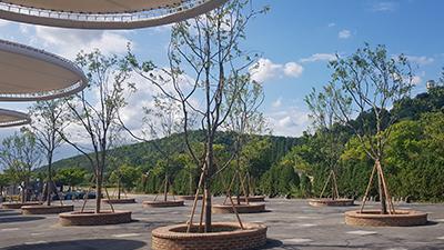 ソウル市、5つの「ハンガン(漢江)の森」造成完了、快適な憩いの場を提供
