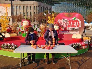 慶北りんごフェスティバル開催