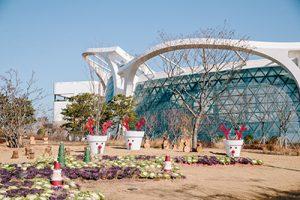 ソウル植物園のウィンターガーデンフェスティバル「ソウルでヨーロッパのクリスマスを楽しもう!」