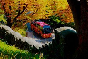 ソウル市、スマートになる「シティツアーバス」のリアルタイム到着サービス開始