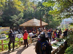 ソウル市、アパートや学校など264か所にサッカー場の7倍を超える規模で都市菜園を設置する newsletter