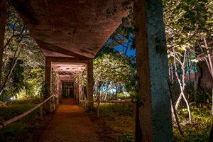 ソニュド(仙遊島)公園の夜景