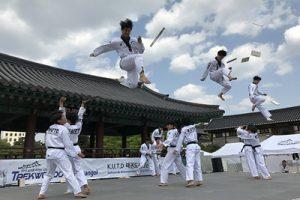 韓国のテコンドーが再び世界を魅了する…2020ソウル市オンラインテコンドー公演を開催