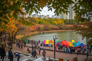 2020ソクチョン(石村)湖紅葉&落葉祭り