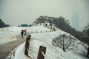 オリンピック公園の冬の風景