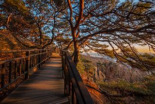カンソ(江西)トゥルレギル第1コース(ケファサン(開花山)森の道)