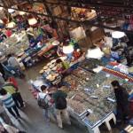 Fresh seafood in Noryanggin market