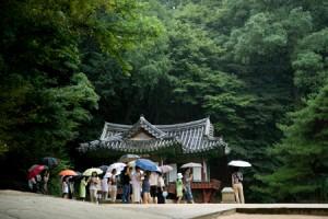 Four Seasons of Seoul - Summer