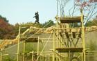 ソウル動物園、世界で最も高い「チンパンジージャングルタワー」を公開