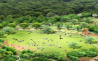 ソウル市、念願の事業「ソウル追慕公園公園」を14年目に完工