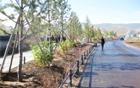 ソウル市、モンゴルのウランバートルにおいて「ソウルの森」の造園を完了