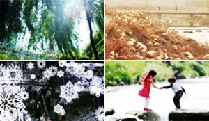 「清渓川の春・夏・秋・冬」テーマ展