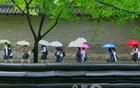 [朴元淳の希望日記174] 気象庁の予報によると、明日は雨が降る可能性が高いと・・・