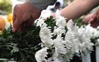[朴元淳の市政日記69]一輪の菊をご霊前に捧げ、懺悔いたします