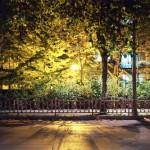 04_autumn_evenings_thum