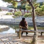 南山伝統庭園